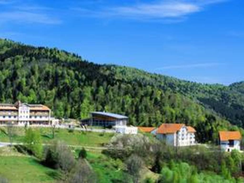 Choisir les Vosges pour ses prochaines vacances