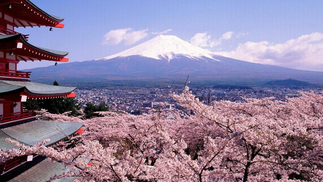 Voyage au Japon : tout ce qu'il faut savoir