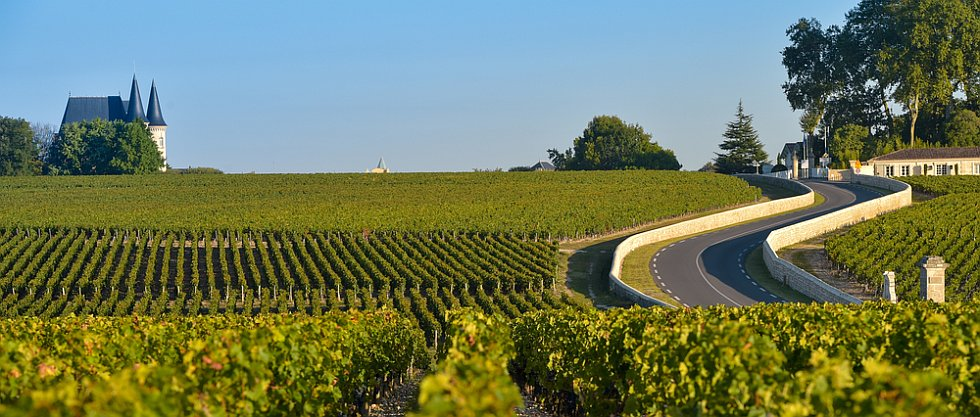 Bordeaux et ses routes des vins