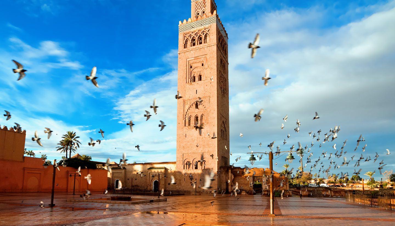 Les musts à faire quand vous êtes à Marrakech