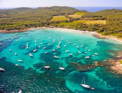 Les 5 plus beaux spots de plongée sur la presqu'île de Giens